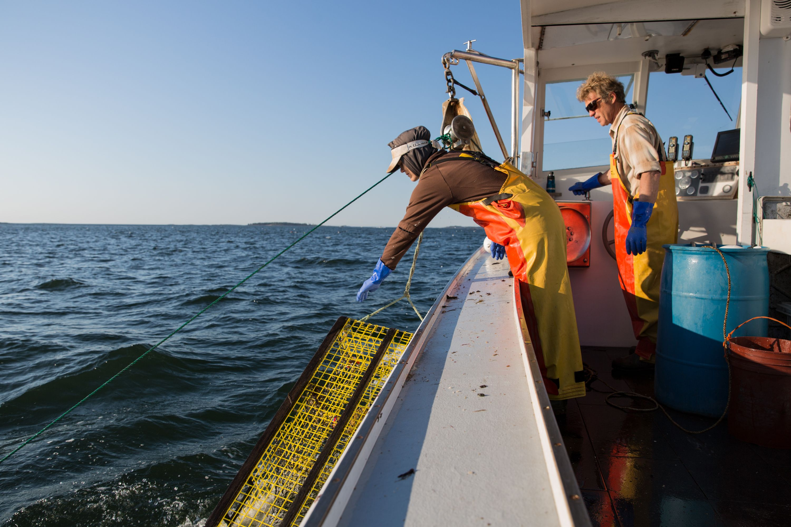 Stonington Bringing up Lobsters onto Boat